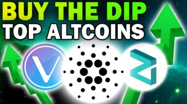 Altcoins With High Potential to Buy in The Dip! (Huge Crypto Gains for 2021)